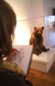 Kathryn sketching bear. Photo: Emily Damstra.