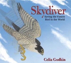 Godkin_Skydiver_Gallery