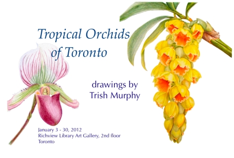 Trish Murphy art exhibit.