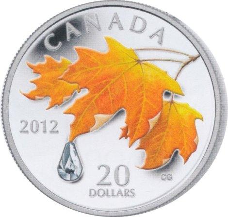2012raindrop.coin-web
