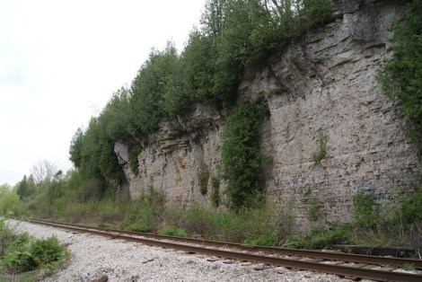 Cliffs along the Guelph Radial Trail. Photo: Emily S Damstra