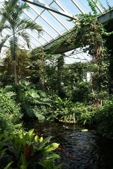 The Cambridge Butterfly Conservatory