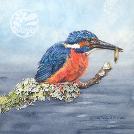 Kingfisher by Tarja Barton