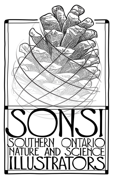 SONSI Logo